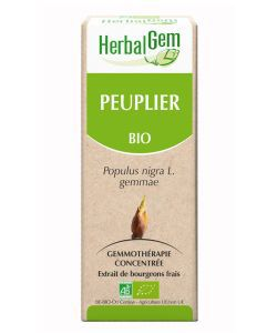Peuplier (Populus Nigra) bourgeon BIO, 15 ml
