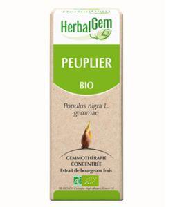 Peuplier (Populus Nigra) bourgeon BIO, 50ml