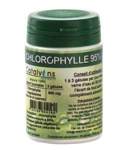 Chlorophylle Magnésienne