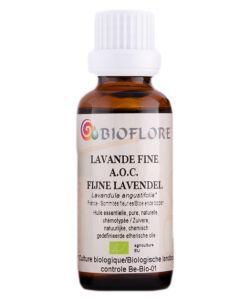 Lavande fine (Lavandula angustifolia) BIO, 30ml