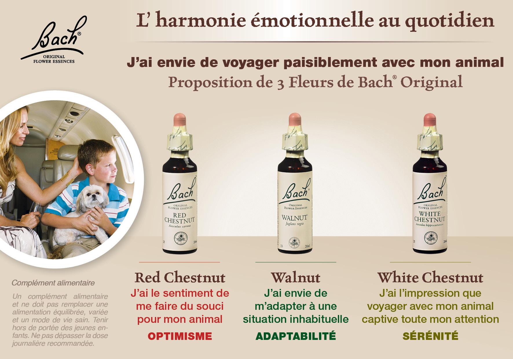 Marronnier Blanc White Chestnut N 35 Fleurs De Bach Originales