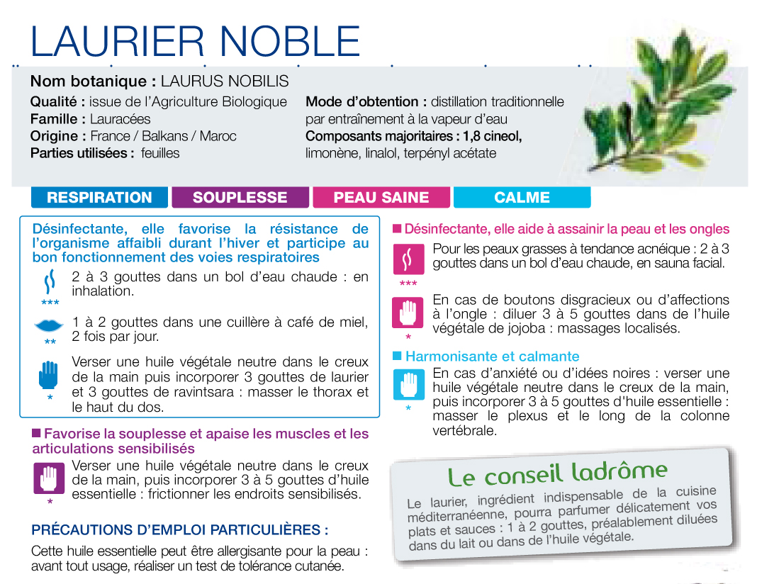 HE Laurier noble